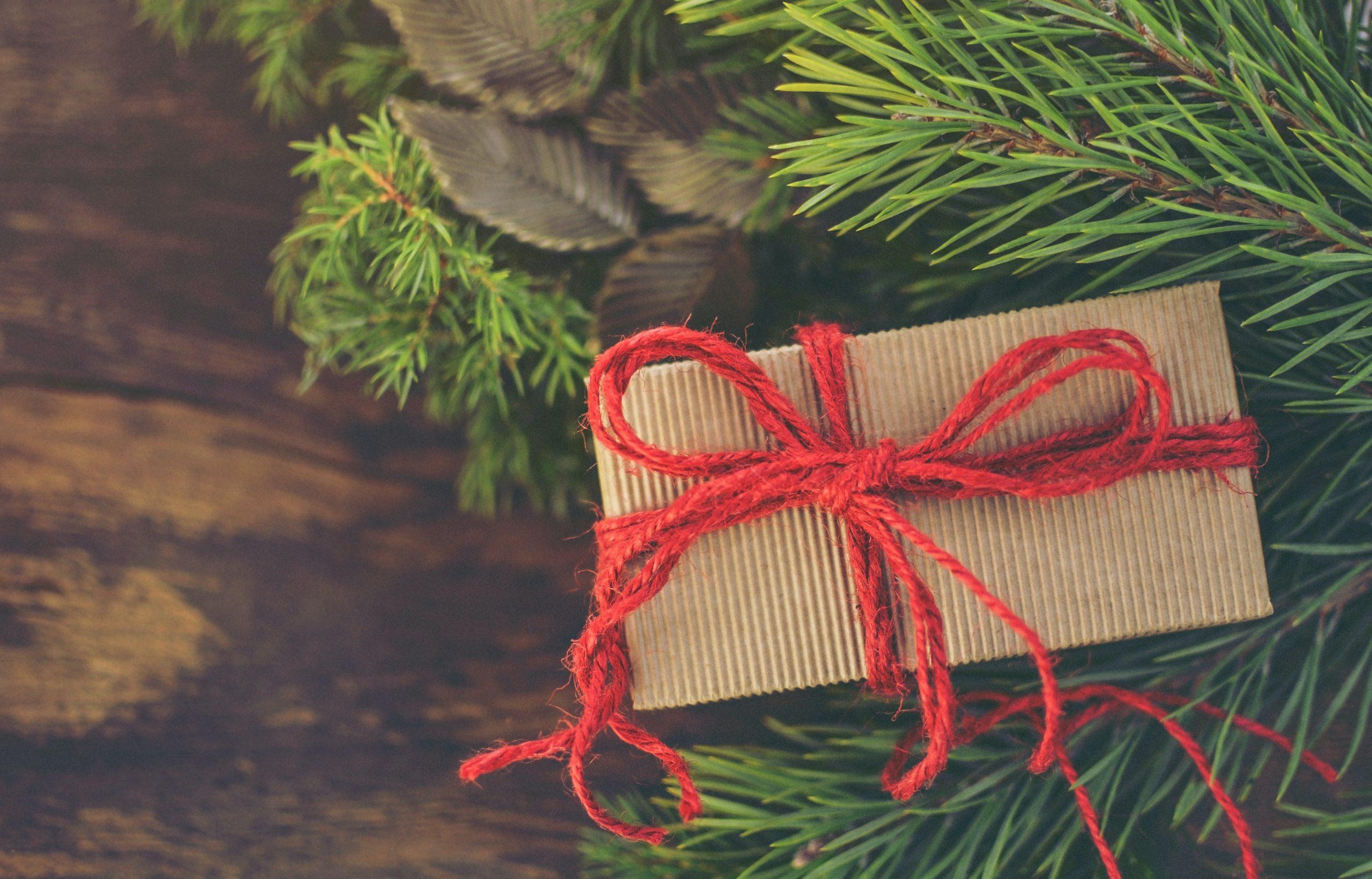 Compact Storage Christmas Image